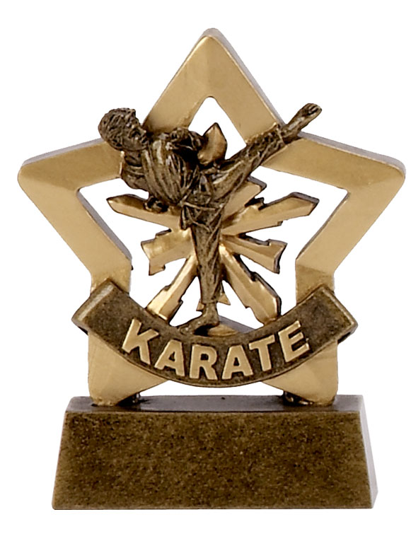 Mini Star Resin Male Karate Trophy