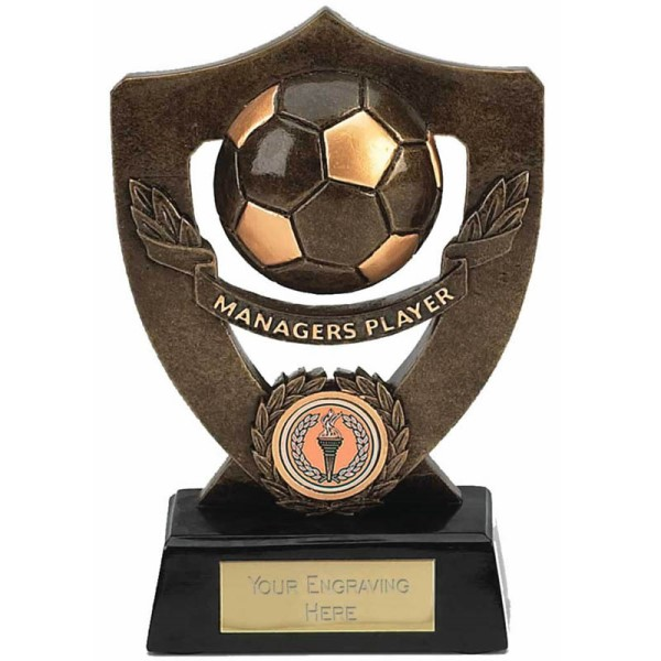 Celebration Shield Players Awards Trophy