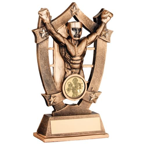 BRZ/GOLD RESIN BOXING 5 STAR TROPHY - (1in CENTRE) 5.5in