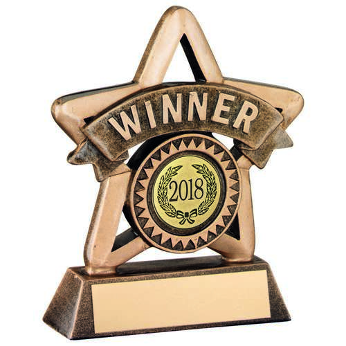 Outline Star Resin WINNER Award - 10.75cm