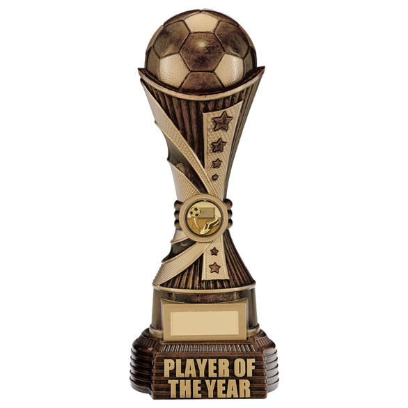 All Stars Player Of The Year Award Antique Bronze & Gold 260mm