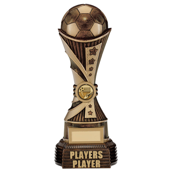 All Stars Players Player Award Antique Bronze & Gold 260mm