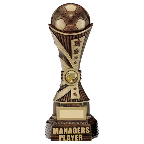 All Stars Managers Player Award Antique Bronze & Gold 260mm