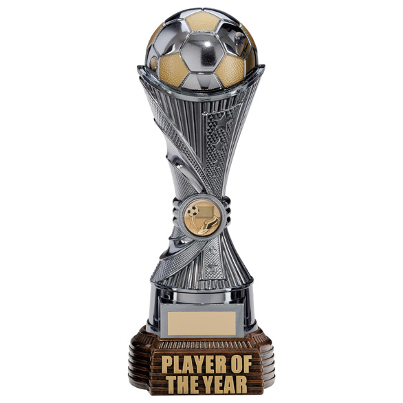 All Stars Player Of The Year Award Gunmetal & Gold 260mm