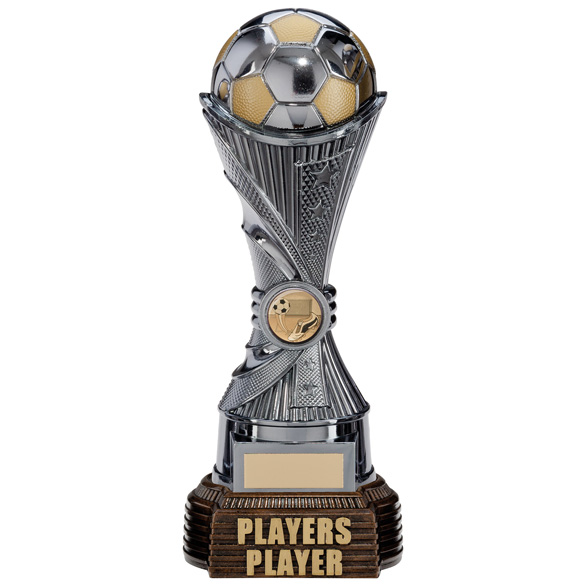 All Stars Players Player Award Gunmetal & Gold 260mm