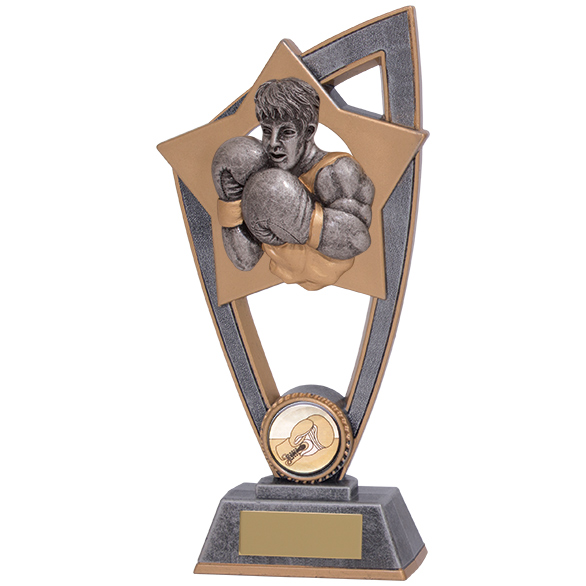Star Blast Boxing Award 200mm