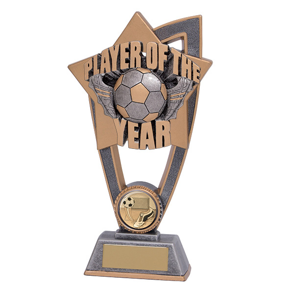 Star Blast Player Of The Year Award 180mm