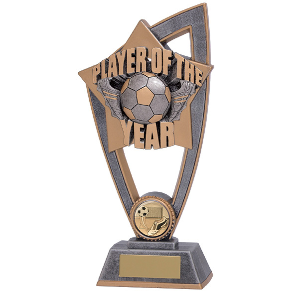 Star Blast Player Of The Year Award 200mm
