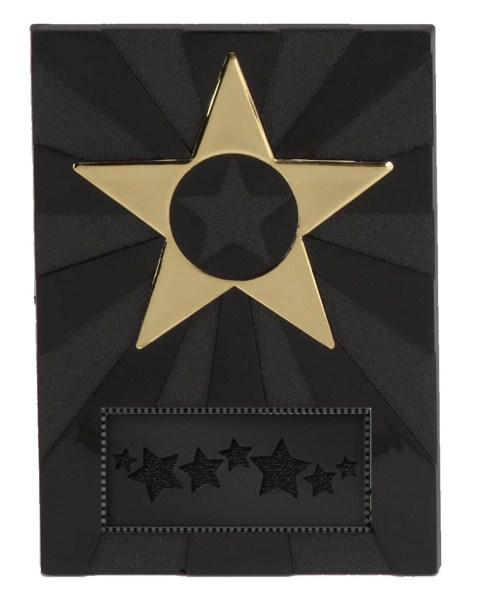 Self Standing Apex Star Economy Plaque