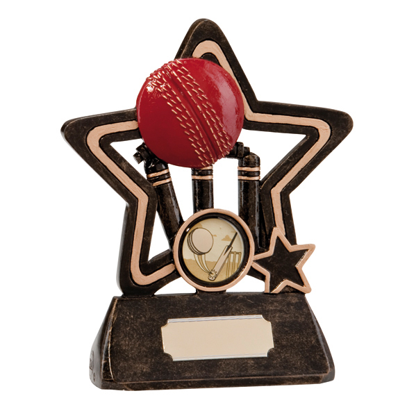 Little Star Cricket Plaque 130mm
