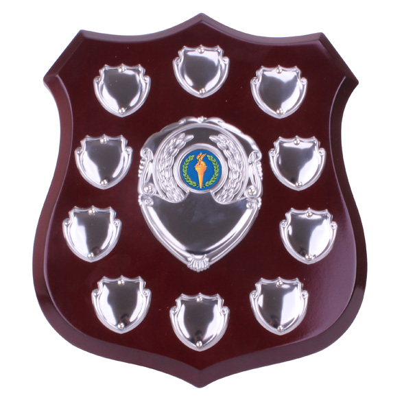 Illustrious Annual Shield Award 215mm