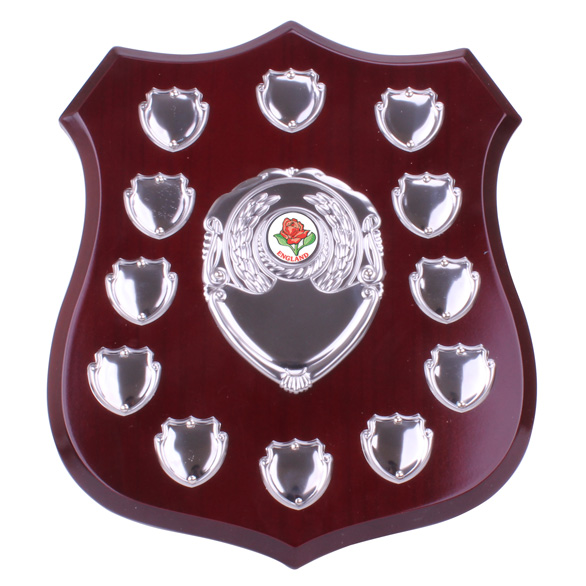 Illustrious Annual Shield Award 255mm