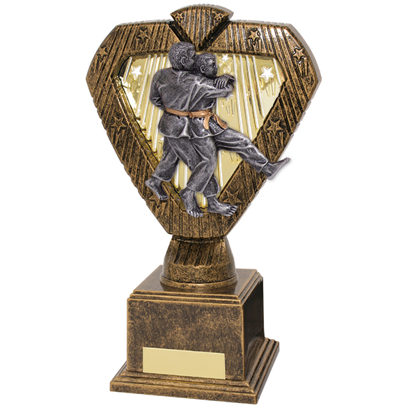 Hero Legend Martial Arts Award 200mm