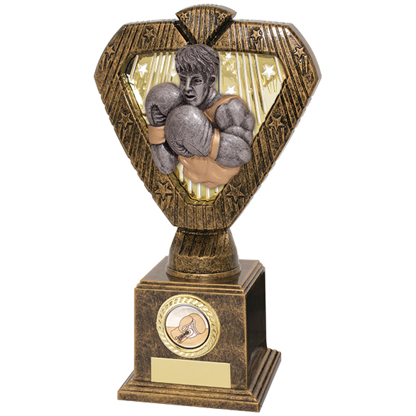 Hero Legend Boxing Award 215mm