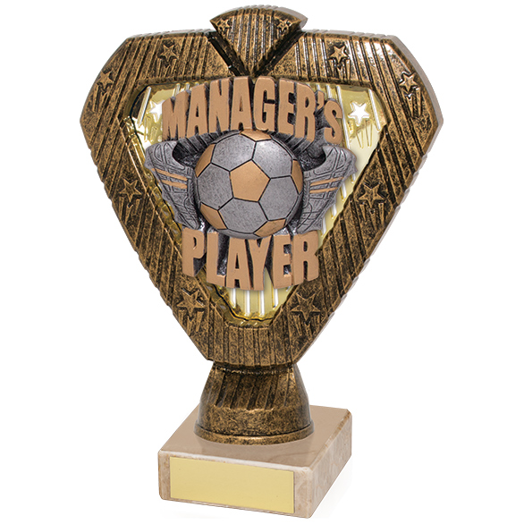 Hero Legend Managers Player Award 165mm