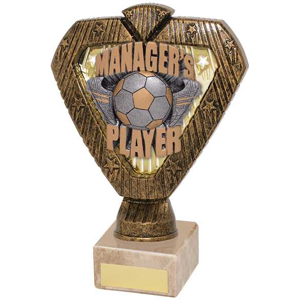 Hero Legend Managers Player Award 180mm