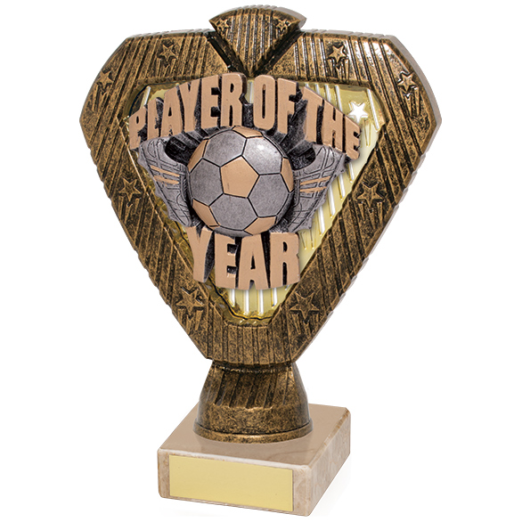Hero Legend Player Of The Year Award 165mm