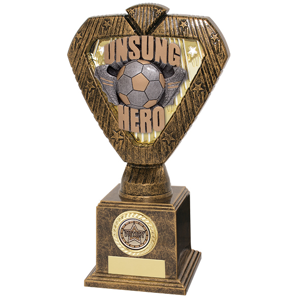 Hero Legend Football Unsung Hero Award 215mm