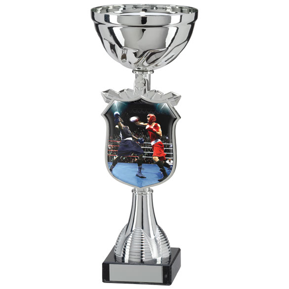 Titans Boxing Cup 210mm